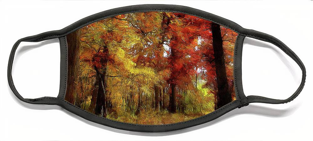 Landscape Face Mask featuring the photograph Heart Of Autumn by Cedric Hampton