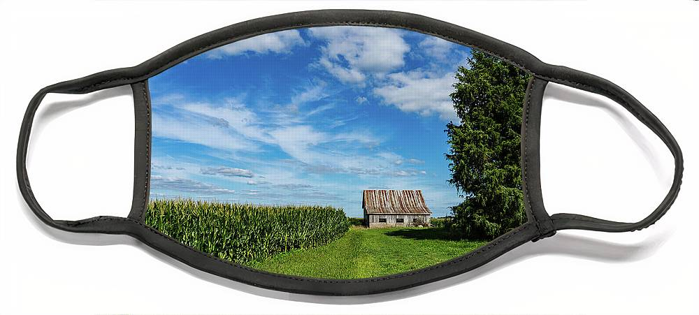 Landscape Face Mask featuring the photograph Indiana Barn #189 by Scott Smith