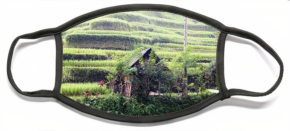 Hut Face Mask featuring the digital art Little hut surrounded by flowers by Worldvibes1