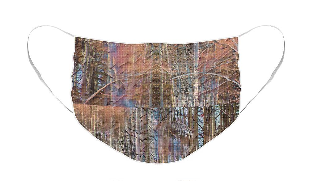 Aspen Face Mask featuring the photograph Moments Of Soft Persuasion by Mike Braun