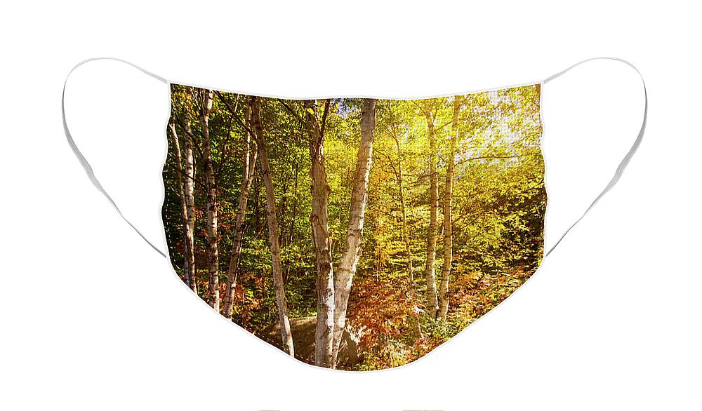 Serene Face Mask featuring the photograph Serene Scene Vermont by Mike Braun