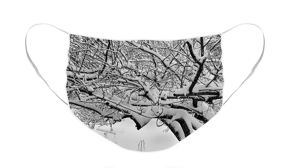 Snow Face Mask featuring the photograph Snow Cover by Rob Hans