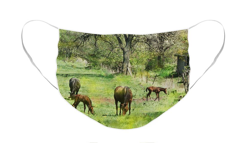 Spring Colts Face Mask featuring the digital art Spring Colts by John Robert Beck