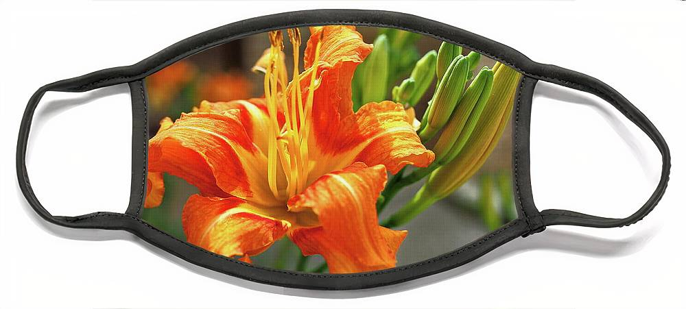 Orange Face Mask featuring the photograph Spring Flower 14 by C Winslow Shafer