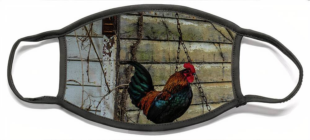 Landscape Face Mask featuring the photograph Swingin' Rooster #2 by Scott Smith