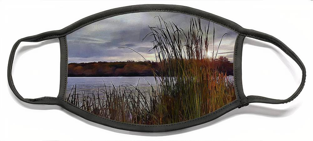 Landscape Face Mask featuring the photograph Tall Grass At Sunset by Cedric Hampton