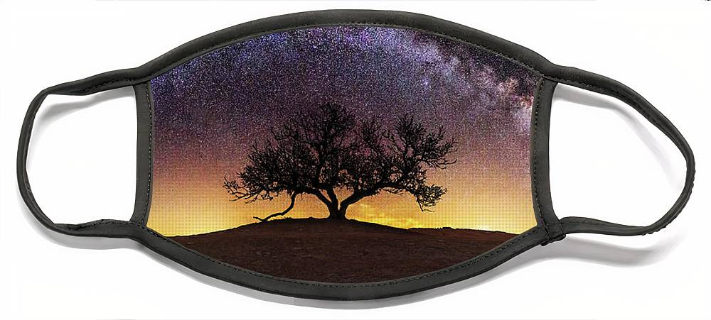 Milky Way Face Mask featuring the photograph Tree of Wisdom by Aaron J Groen