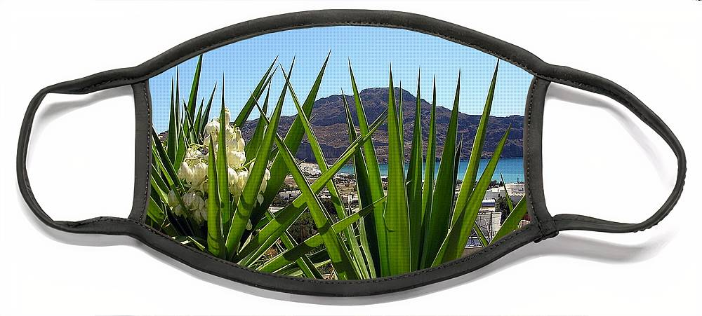 Crete Face Mask featuring the photograph View through a yucca, Crete by Paul Boizot