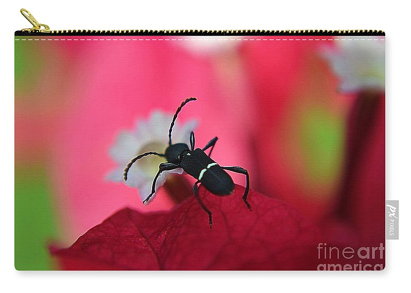 Michelle Meenawong Carry-all Pouch featuring the photograph Black Bug by Michelle Meenawong
