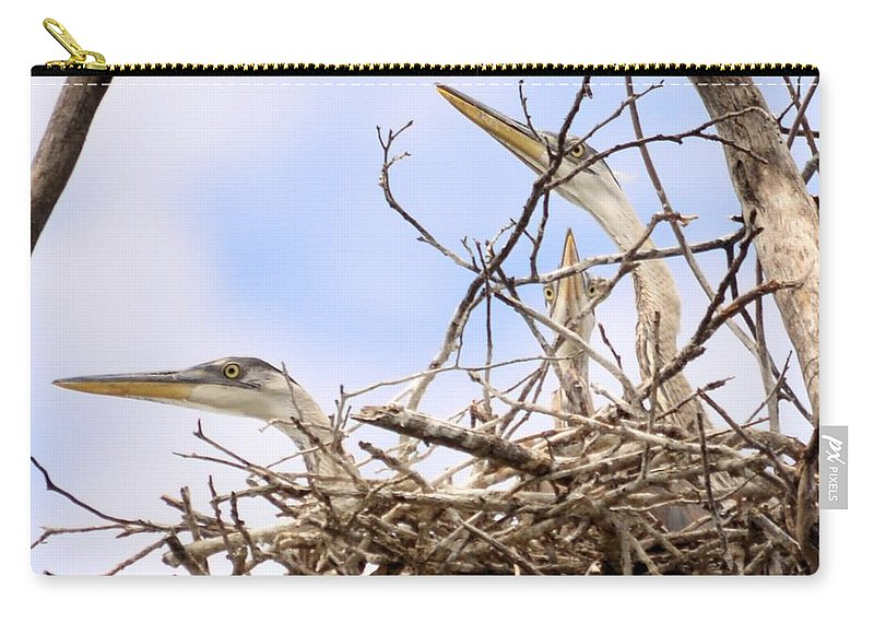 Blue Heron Carry-all Pouch featuring the photograph Blue Heron Rookery 7214 by Bonfire Photography