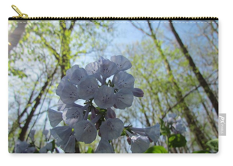 Wild Bluebells Carry-all Pouch featuring the photograph Bluebells by Eric Noa