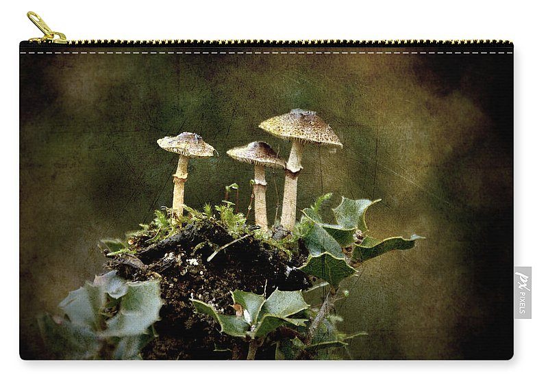 Mushrooms Carry-all Pouch featuring the photograph Little Mushrooms by RicardMN Photography