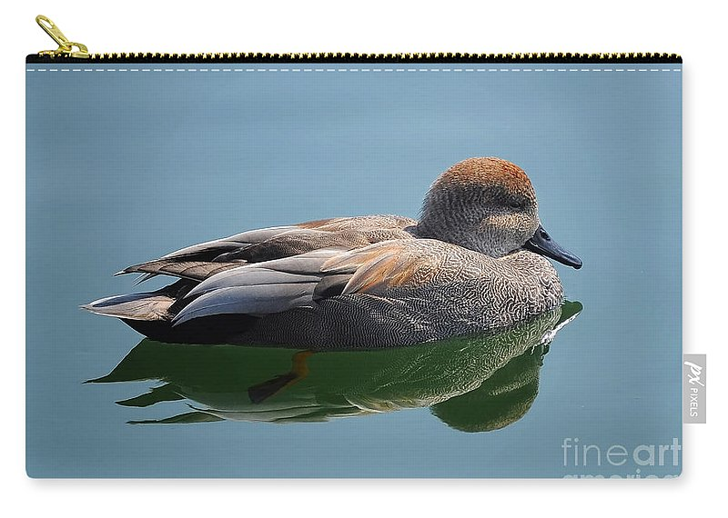 Duck Carry-all Pouch featuring the photograph Male Gadwall Duck by Elaine Manley