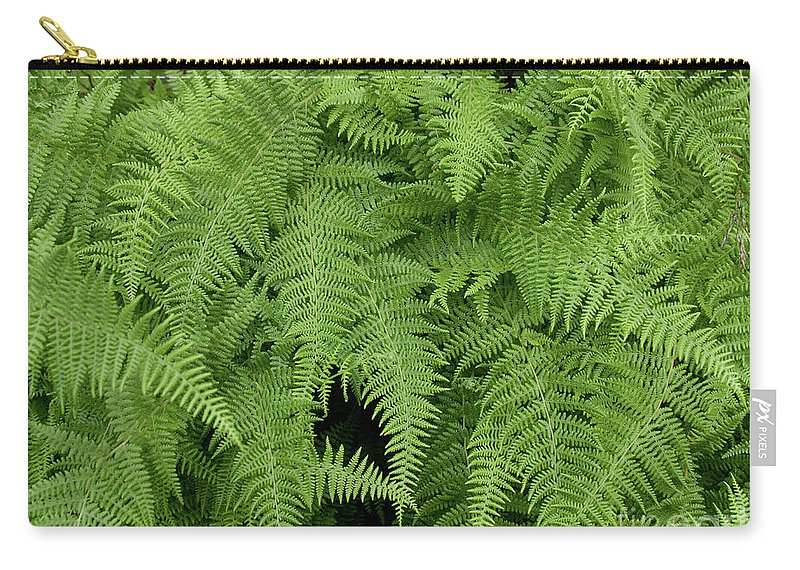 Botanical Carry-all Pouch featuring the photograph Mountain Ferns Of North Carolina by John Harmon