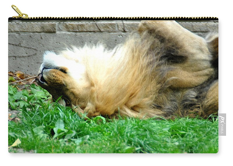 Lion Carry-all Pouch featuring the photograph 001 Lazy Boy At The Buffalo Zoo by Michael Frank Jr