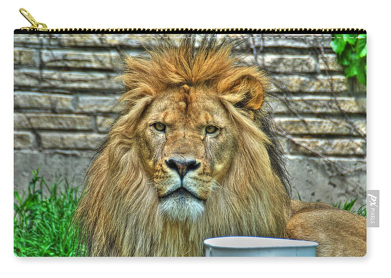 Lion Carry-all Pouch featuring the photograph 006 Lazy Boy At The Buffalo Zoo by Michael Frank Jr