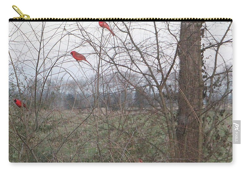 Tn Carry-all Pouch featuring the photograph 0172 4males 2 Females by Ericamaxine Price