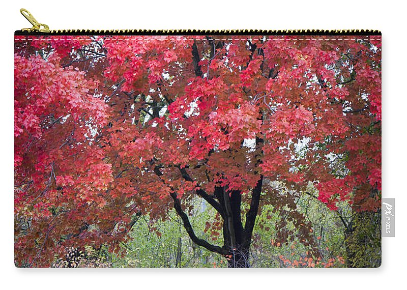 Scenic Carry-all Pouch featuring the photograph 0277 Blazing Red by Steve Sturgill
