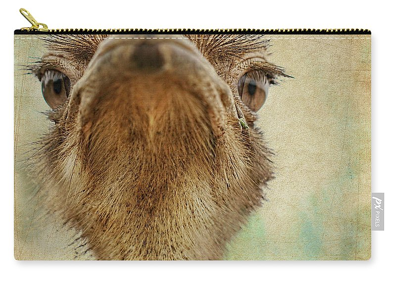 Ostrich Carry-all Pouch featuring the photograph Ostrich Closeup by Terry Fleckney