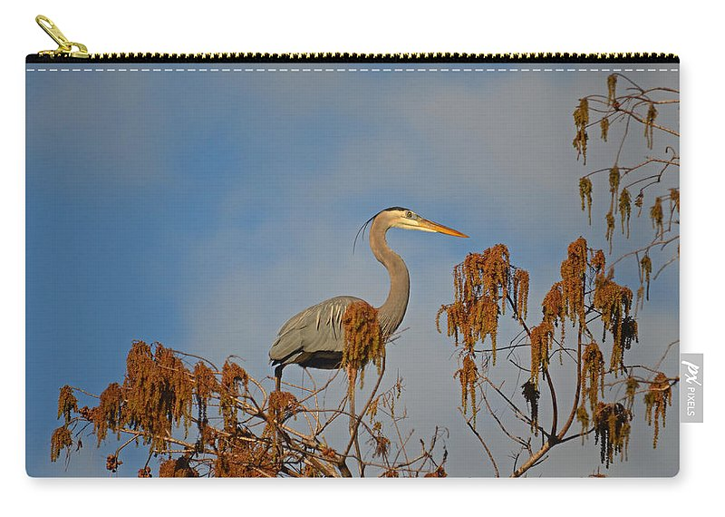Great Blue Heron Carry-all Pouch featuring the photograph 7- Great Blue Heron by Joseph Keane