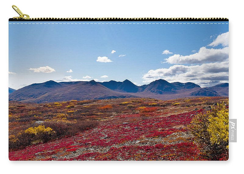 Adventure Carry-all Pouch featuring the photograph Alpine Landscape In Fall by Stephan Pietzko