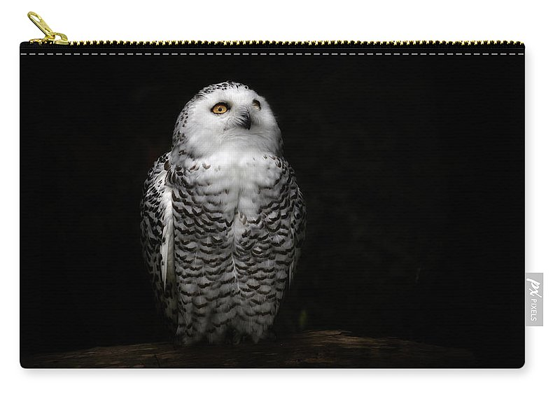 Animal Themes Carry-all Pouch featuring the photograph An Owl by Kaneko Ryo