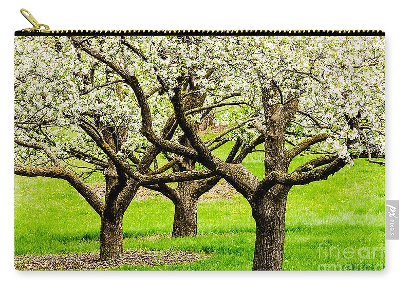 Minnesota Carry-all Pouch featuring the photograph Apple Blossoms by Joe Mamer