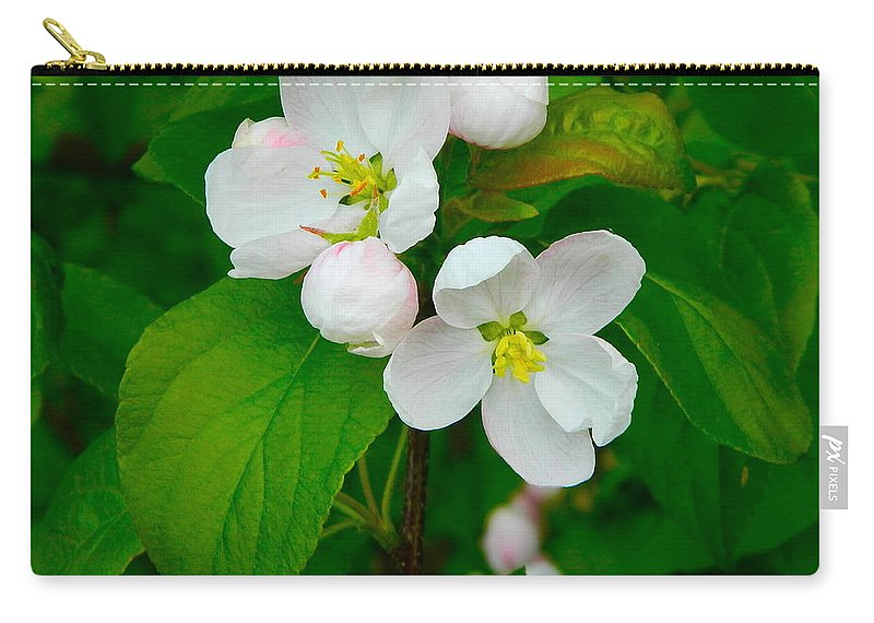 Apple Blossoms Carry-all Pouch featuring the photograph Apple Blossoms by Johanna Bruwer