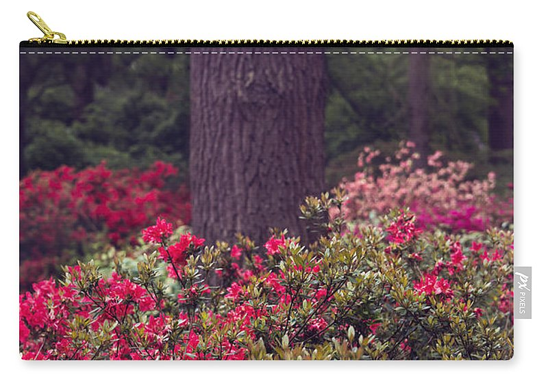 Air Carry-all Pouch featuring the photograph Around A Tree by Svetlana Sewell