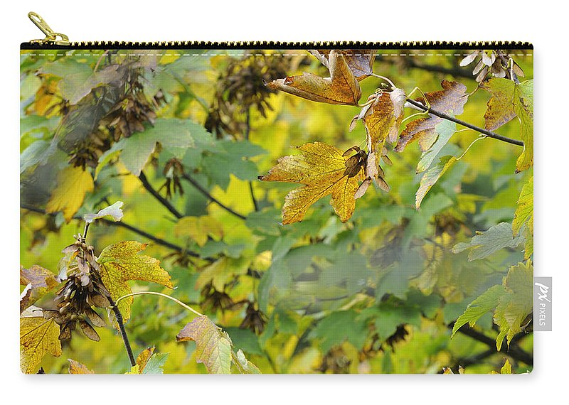 Tree Carry-all Pouch featuring the photograph Autumn Leaves by Guido Montanes Castillo