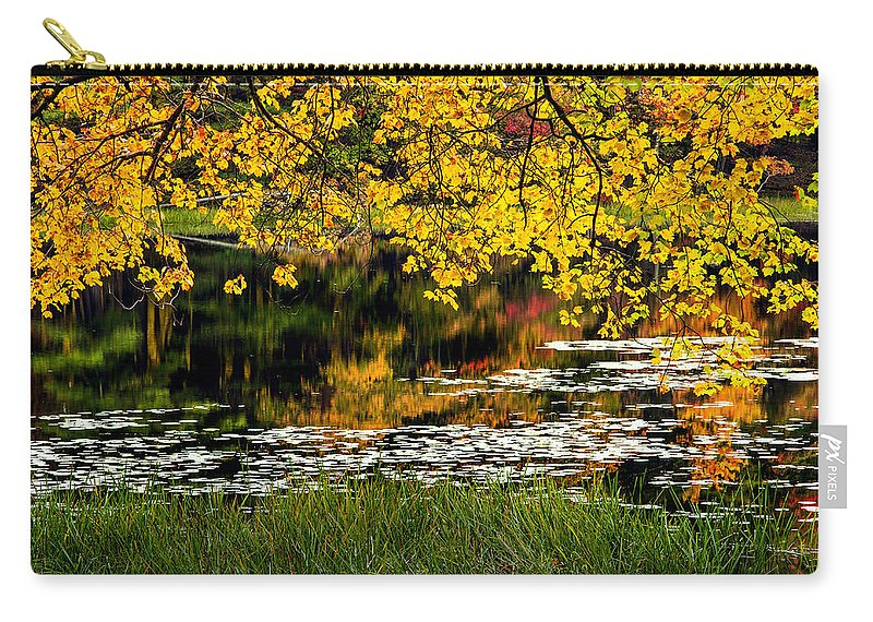 Wetland Carry-all Pouch featuring the photograph Autumn Pond 2013 by Bill Wakeley