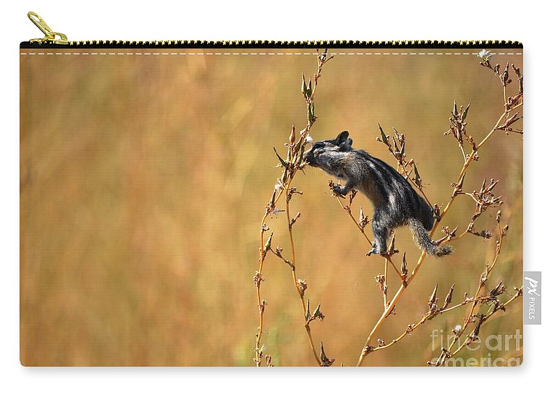 Chipmunk Carry-all Pouch featuring the photograph Balancing Act by Deanna Cagle