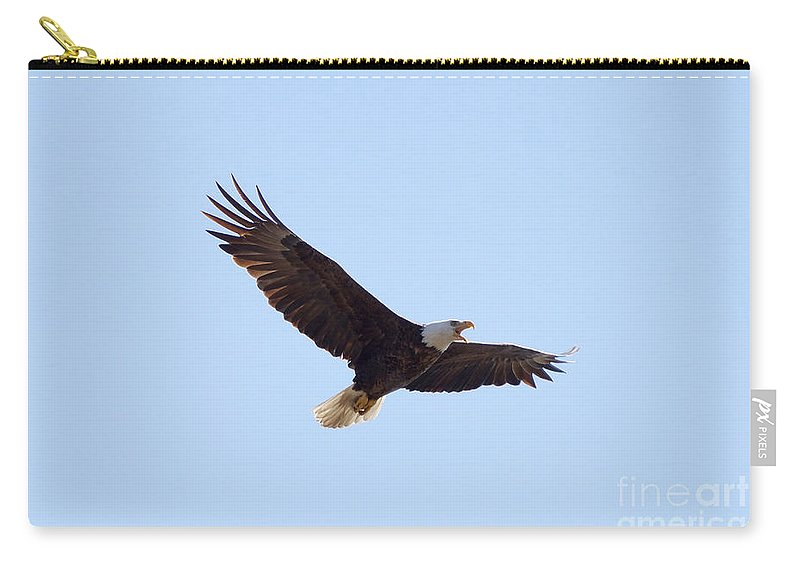 Eagle Carry-all Pouch featuring the photograph Bald Eagle Calling by Lori Tordsen
