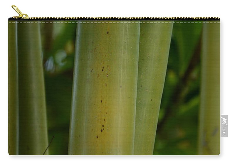 Bamboo Carry-all Pouch featuring the photograph Bamboo II by Robert Meanor