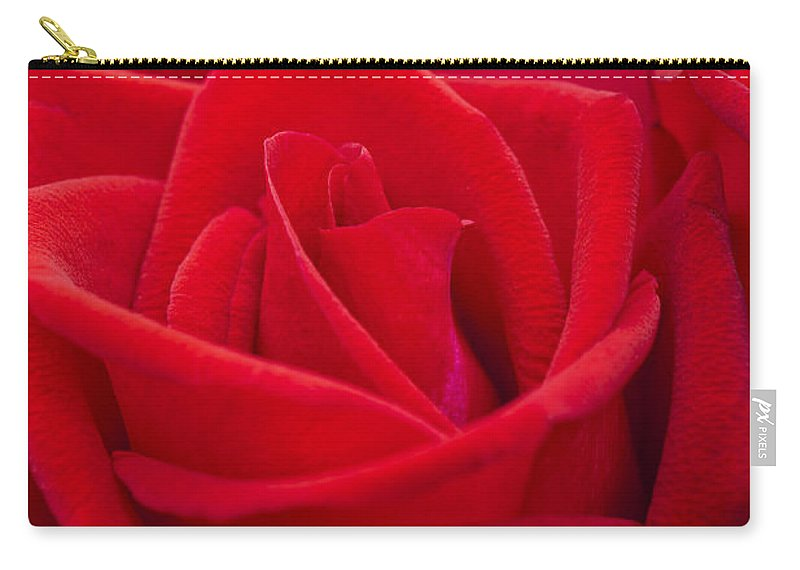 Rose Carry-all Pouch featuring the photograph Beautiful Red Rose Close Up Shoot by U Schade