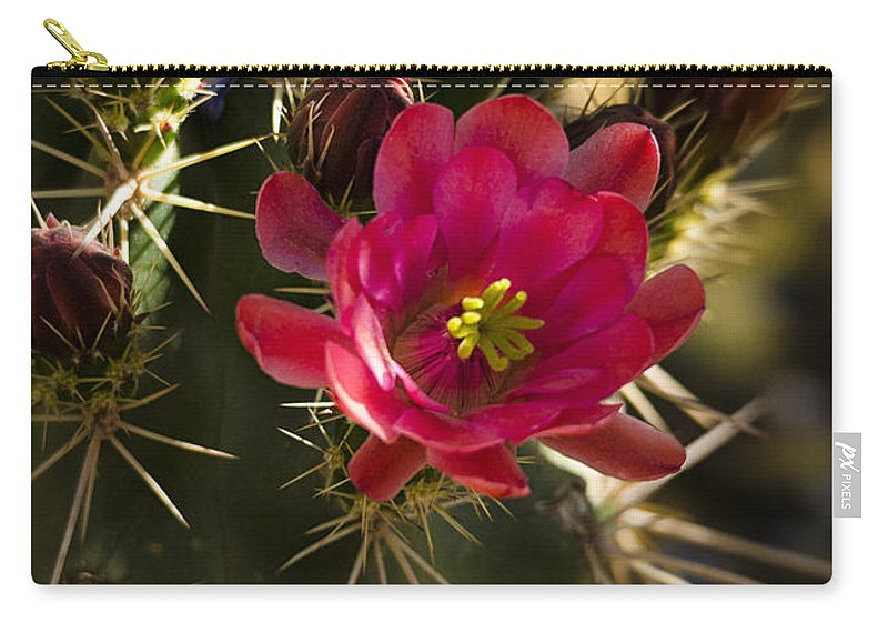 Arizona Carry-all Pouch featuring the photograph Beauty In The Desert by Saija Lehtonen