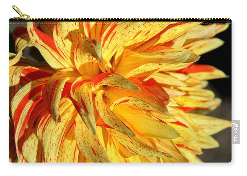 Yellow Dahlia Carry-all Pouch featuring the photograph Beauty In The Sun by Christiane Schulze Art And Photography