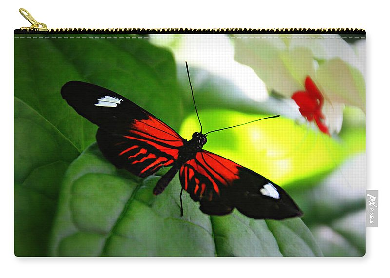 Beauty Carry-all Pouch featuring the photograph Beauty by Tina Meador