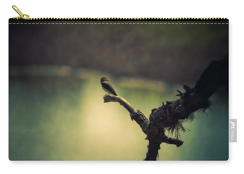 Birds Carry-all Pouch featuring the photograph Bird Watching by Kim Henderson