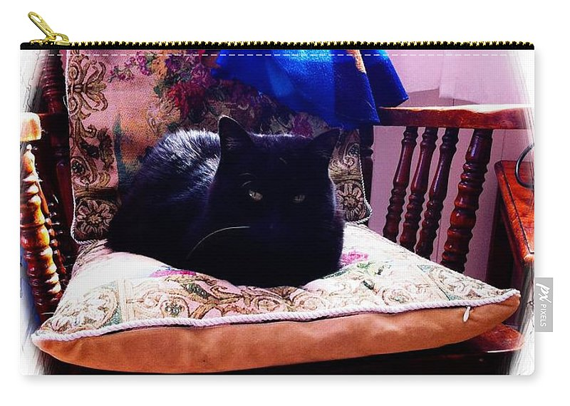 Black Cat With One White Whisker Carry-all Pouch featuring the photograph Black Cat With One White Whisker by Barbara Griffin