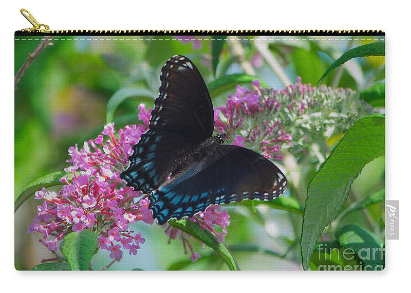 Black. Swallowtail. Butterfly Carry-all Pouch featuring the photograph Black Swallowtail Butterfly by Mark Dodd