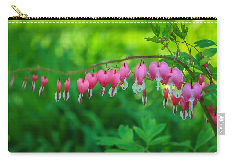 Flower Carry-all Pouch featuring the photograph Bleeding Heart by Jane Luxton