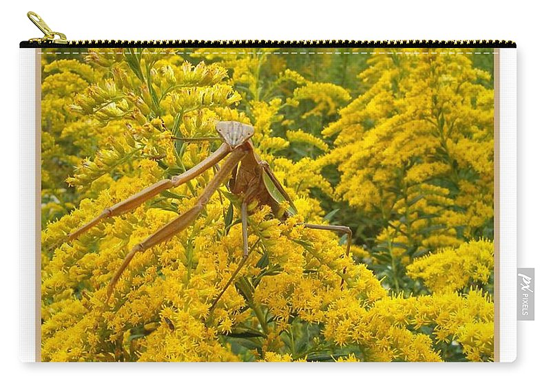 Praying Carry-all Pouch featuring the photograph Blending In by Sara Raber