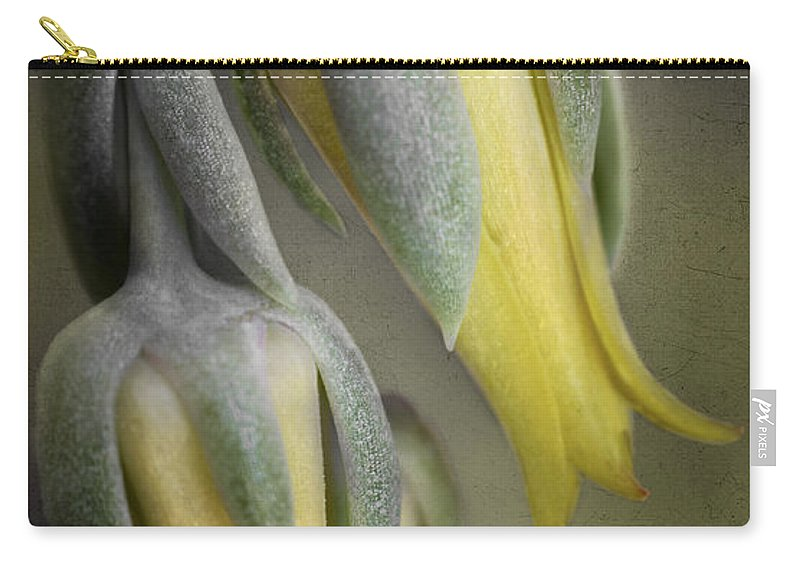 Bloom Carry-all Pouch featuring the photograph Blooming Cacti by David and Carol Kelly