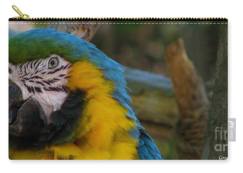 Patzer Carry-all Pouch featuring the photograph Blue And Gold by Greg Patzer