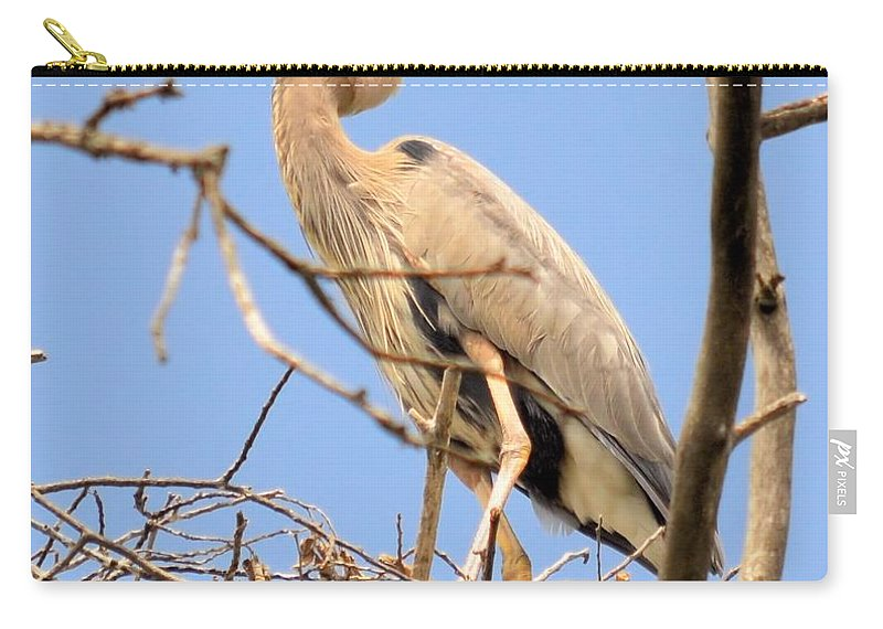 Blue Heron Carry-all Pouch featuring the photograph Blue Heron Rookery 7231 by Bonfire Photography