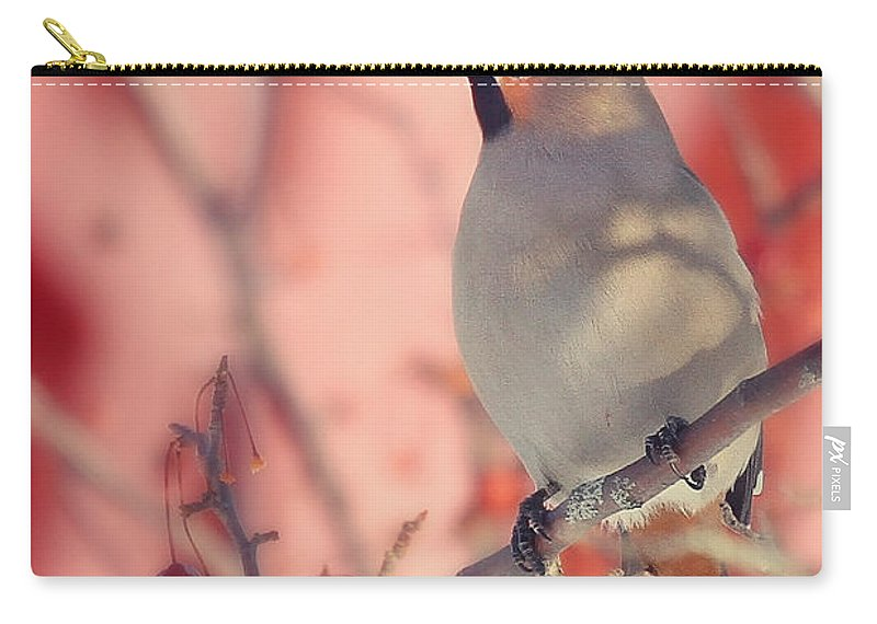 Maine Wildlife Carry-all Pouch featuring the photograph Bohemian Waxwing by Sharon Fiedler