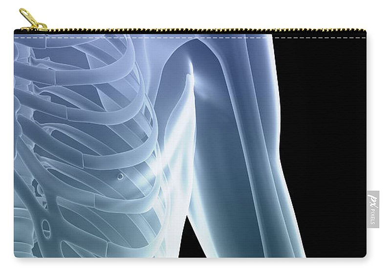 3d Visualisation Carry-all Pouch featuring the photograph Bones Of The Shoulder And Chest by Science Picture Co