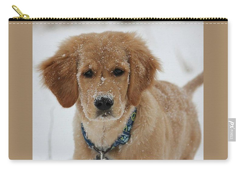 Golden Retriever Puppy Carry-all Pouch featuring the painting Bongo In The Snow by Frankie Picasso