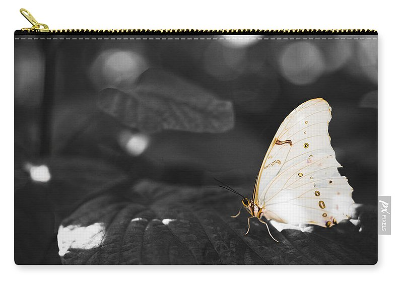 Florida Carry-all Pouch featuring the photograph Butterfly by Bradley R Youngberg